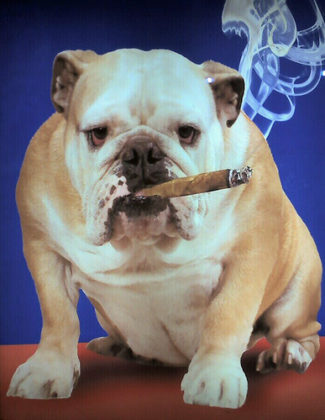 Rechtszaak bij versoepeling rookverbod