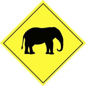 Sollicitant schrikt niet van olifant in de koelkast