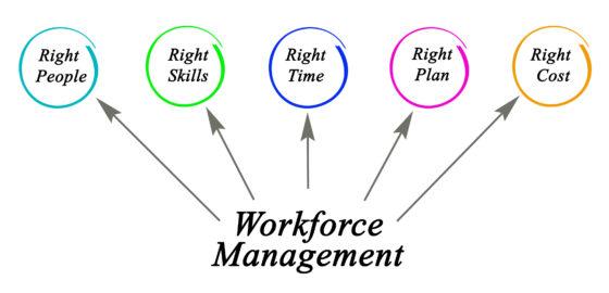 5 tips voor Lean personeelsplanning