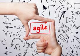 Agile strategie: de randvoorwaarden (2)