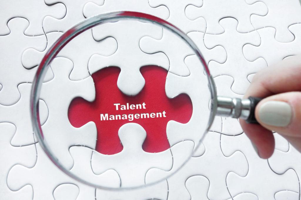 Grote verschillen bij talentmanagement in bedrijven