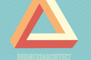 Businessarchitect & Verandermeester