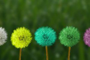 5 stappen naar een echte cultuurverandering