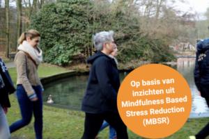 Mindful Walking voor jouw organisatie!